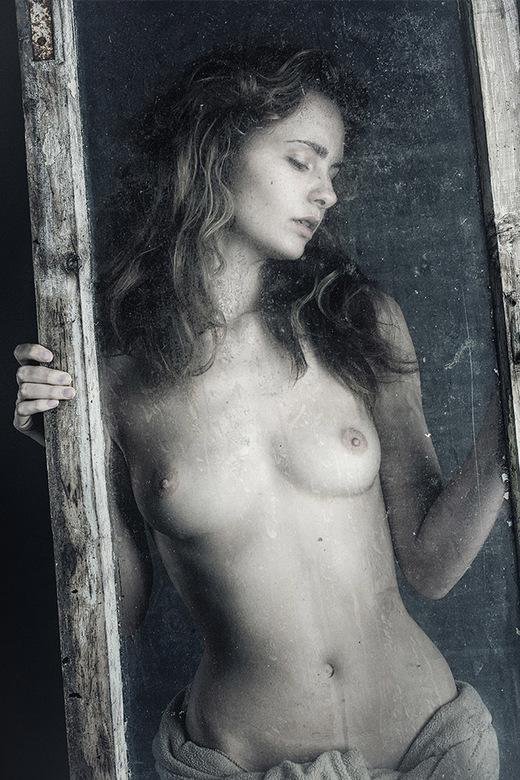 Morgenstimmung - Evelyn Sommer