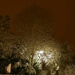 Sneeuw in de buurt