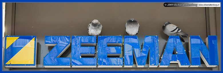 Uitverkoop bij Zeeman - Het was bij Zeeman een drukte van belang in verband met alweer een uitverkoop. Wat de klanten niet (maar mij wel) opviel, was