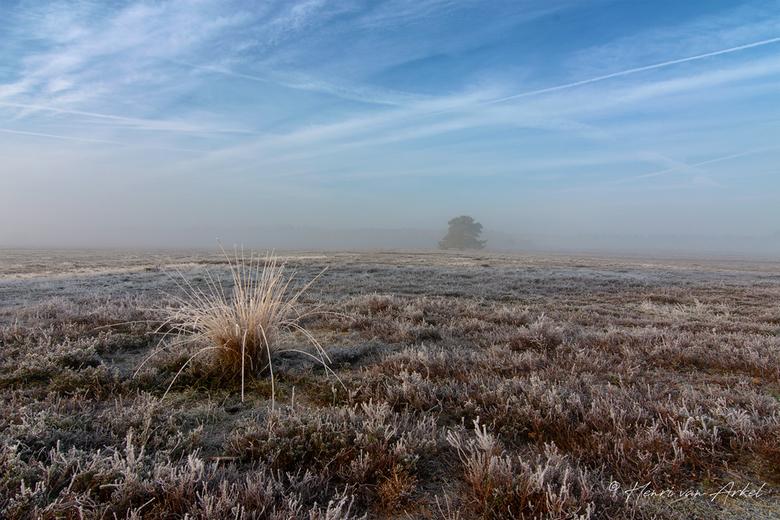 Renderklippen - Heerde (2) - 4 november 2018 - Een koude zondagochtend in alle vroegte op de Renderklippen met mist en rijp.