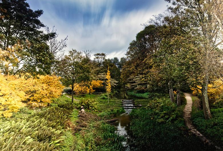 Herfst in het Westerpark - Westerpark in herfsttooi