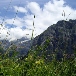 Eiger Mönch Jungfrau in wolken