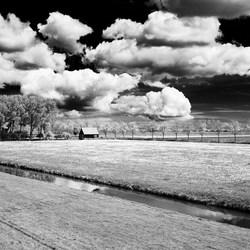 Hollands landschap II