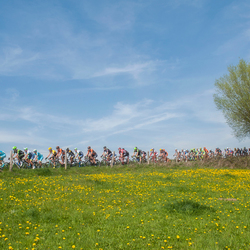 Amstel Gold Race door Jack Kochanowski