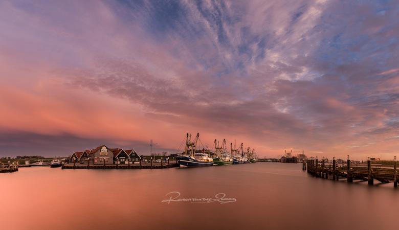 oudeschild - de haven van Oudeschild vroeg in de ochtend.