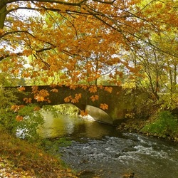 Sfeervolle herfst