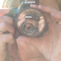 foto van een lens in een lens.