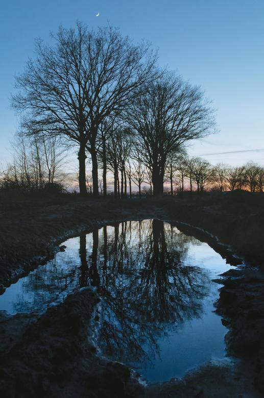 """De maan boven de bomen - Zonsondergang na regen.<br /> <br /> Bij interesse is er meer te zien op mijn <a href=""""https://www.instagram.com/gijsphotog"""