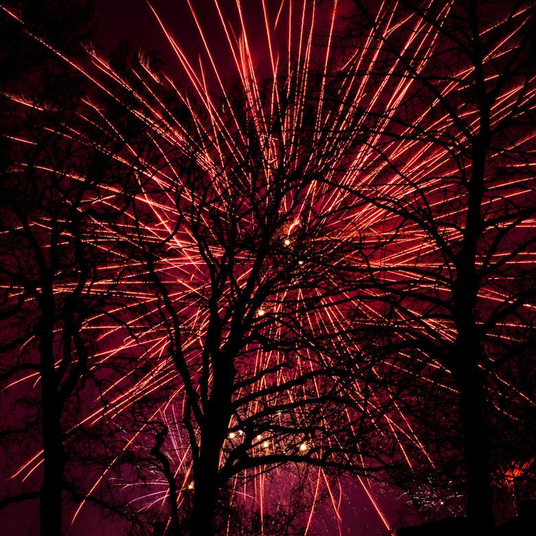 Vuurwerk achter de bomen (week 1)