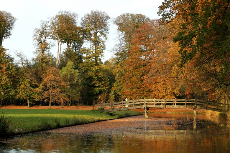 Herfst - Gisteren tijdens een wandeling door het bos, dit herfst landschap gefotografeerd.<br /> Groetjes Stephan<br />