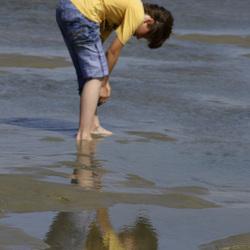 de zeespiegel