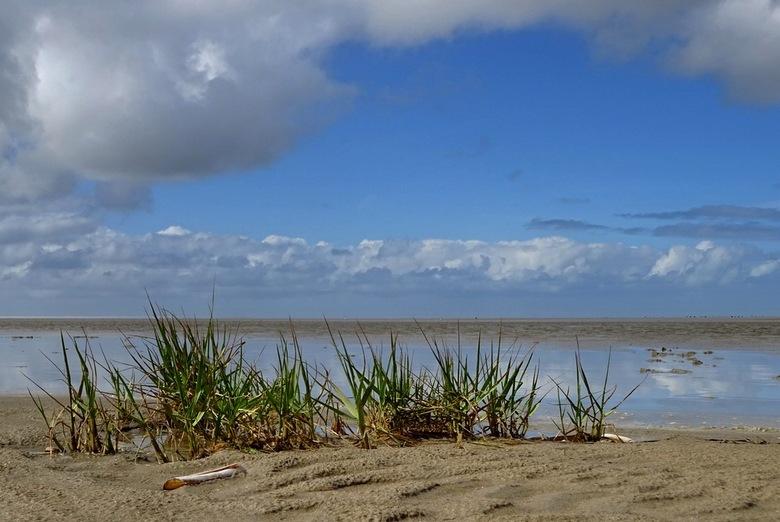 strand Ouddorp - strand Ouddorp