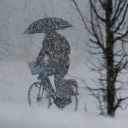 sneeuwplu