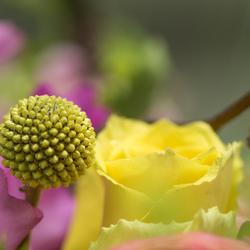 Deel van bloemstuk