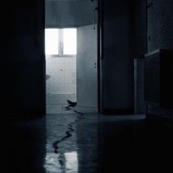 Behind doors