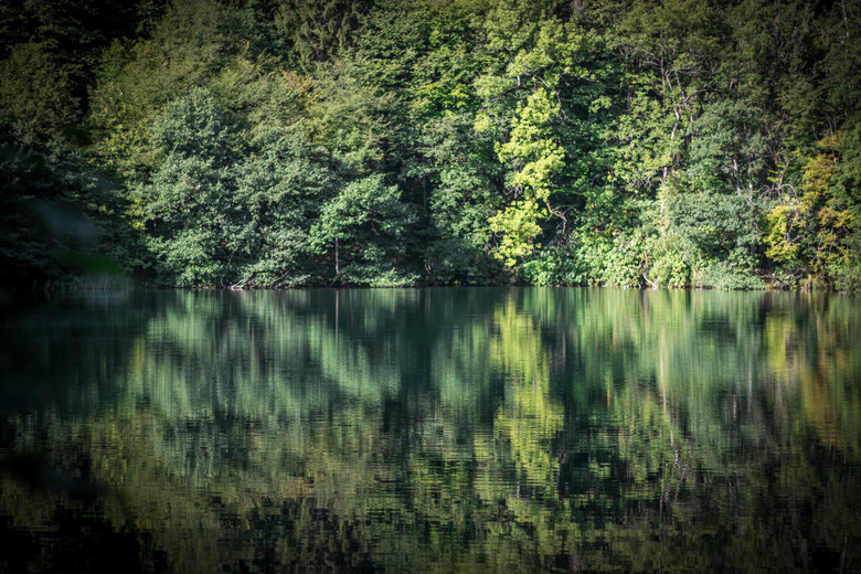 Weerspiegeling - Weerspiegeling van een meer in plitvice nationaal park, kroatie