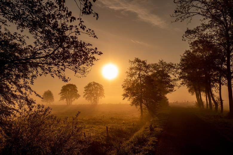 Zonsopkomst Roderwolde - Mistige ochtend