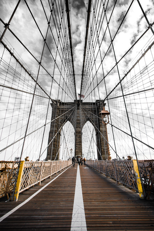 Brooklyn Bridge - Scientists are people who build the Brooklyn Bridge and then buy it. William F. Buckley, jr.