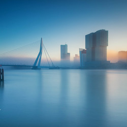 Fog in Rotterdam