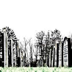 joods begraafplaats