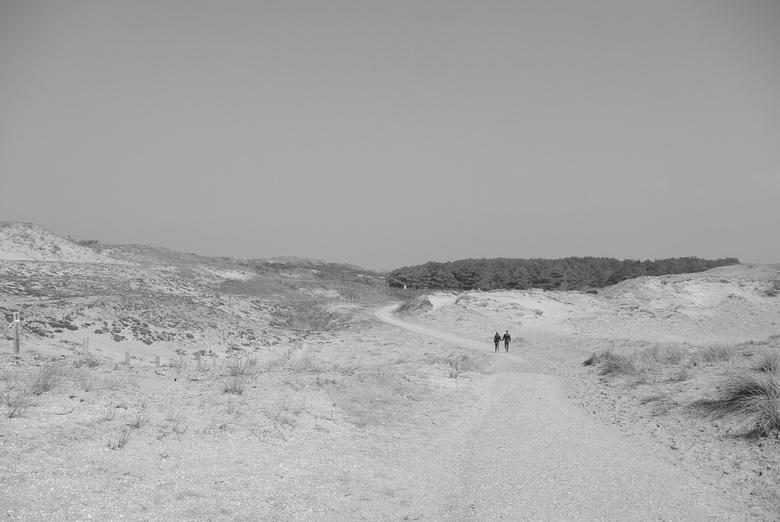 Duin wandeling -