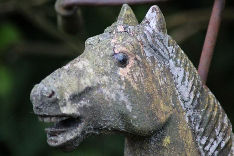 Houten paard -  oud houten paard