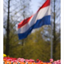 Kijk Op Onze Vlag