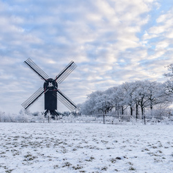 Wintertime **