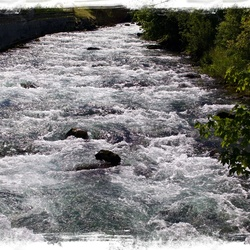 Here water is abundant ...