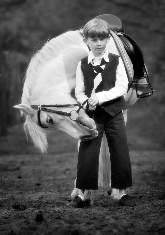 Mijn lieve paardje