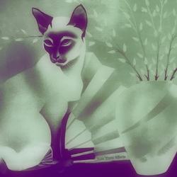 poesje miauw