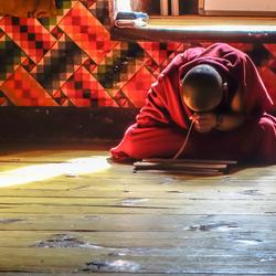 Biddende Monnik Bhutan