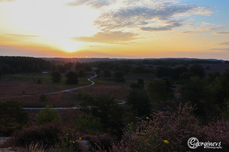 Brunssummerheide bij zonsopkomst. -
