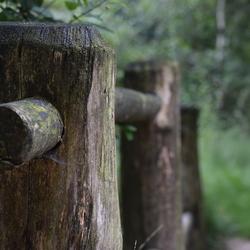 houten bruggetje