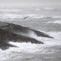 storm zeeuwse kust