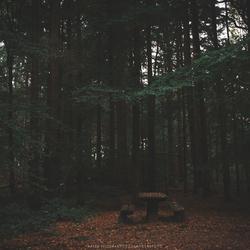 Falls picknick
