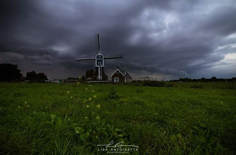 Koufront Leiden -
