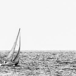 Sail away ........