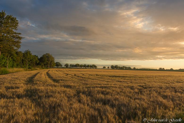 Field of gold - Graanveld in het warme licht tijdens de zonsopkomst.<br /> <br /> Bedankt vooir jullie fijne reacties.<br /> Groet, John.