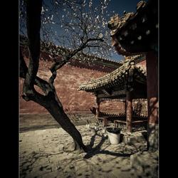 Lente in Peking