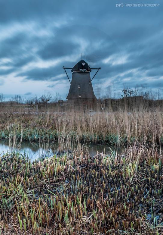 Windkracht - Dit is waarom molens zulke bijzondere bouwwerken zijn: kunnen draaien op de natuurkracht van de wind.