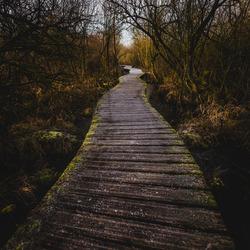 Moerputten Trail