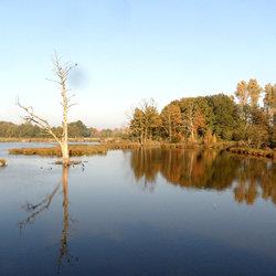 Herfst aan de Wittsee.
