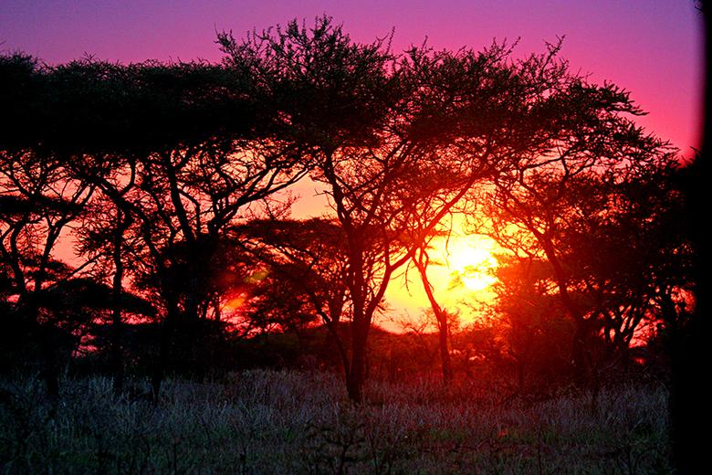 Zonsondergang in Kenia - Hier hoef je eigenlijk geen woorden toe te voegen.