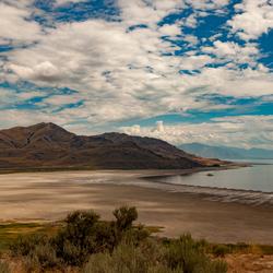 Antilope Island Utah USA