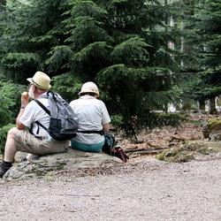 Nationalpark Bayerischer Wald Duitsland
