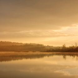 Mechelse heide at morning