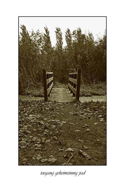 geheim pad - ook weer madestein.een geheimzinnig pad.waar je uit komt in een kruide tuin.