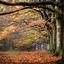 herfst op zijn mooist