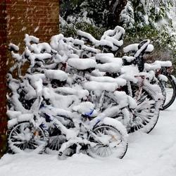 Sneeuwfietsen